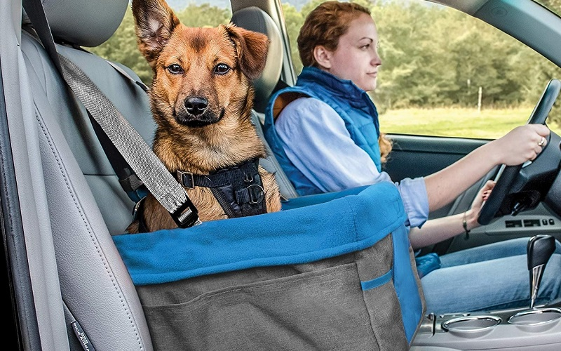 The 13 Best Dog Car Seats Reviews 2021