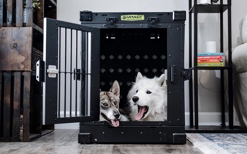 The 12 Best Dog Crates Reviews 2021
